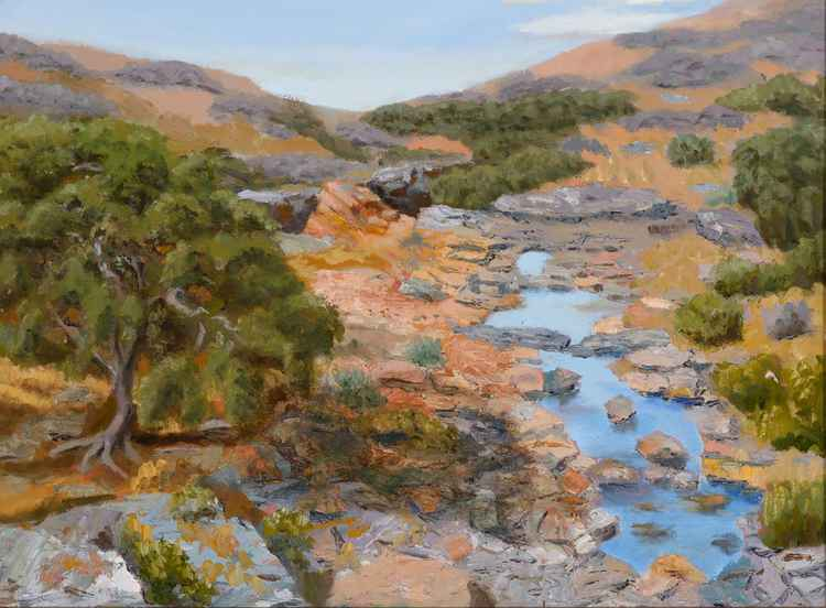desert stream mexico -