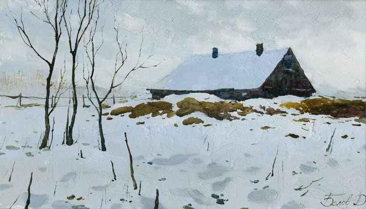 January snow -