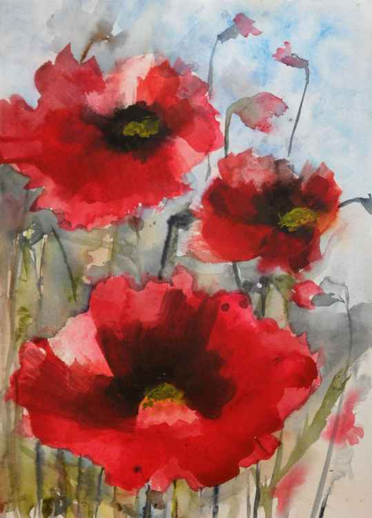 Red Poppies IX