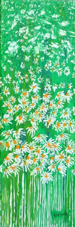Daisies In The Grass 2 - Image 0