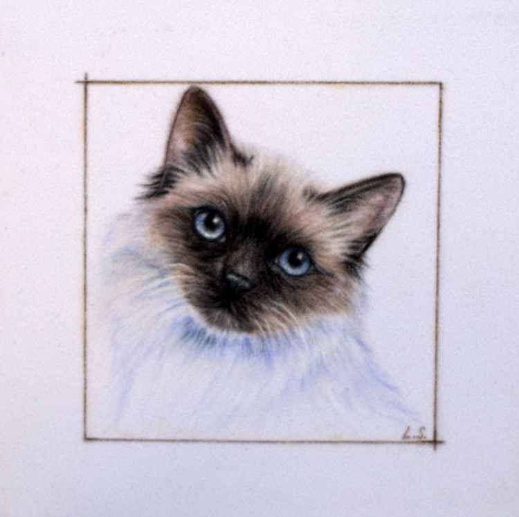 Cat miniature original pastel drawing -