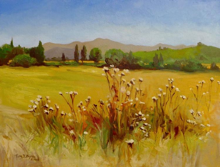 Umbrian fields - Image 0