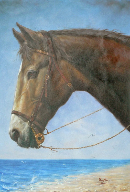 ORIGINAL OIL PAINTING ANIMAL ART HORSE IN SEASIDE ON LINEN #16-10-2-04 - Image 0