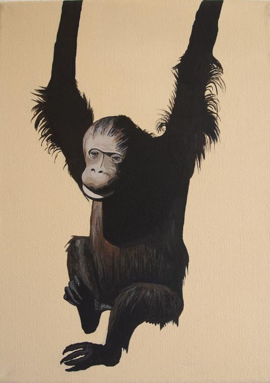 Chimpanzee - Image 0