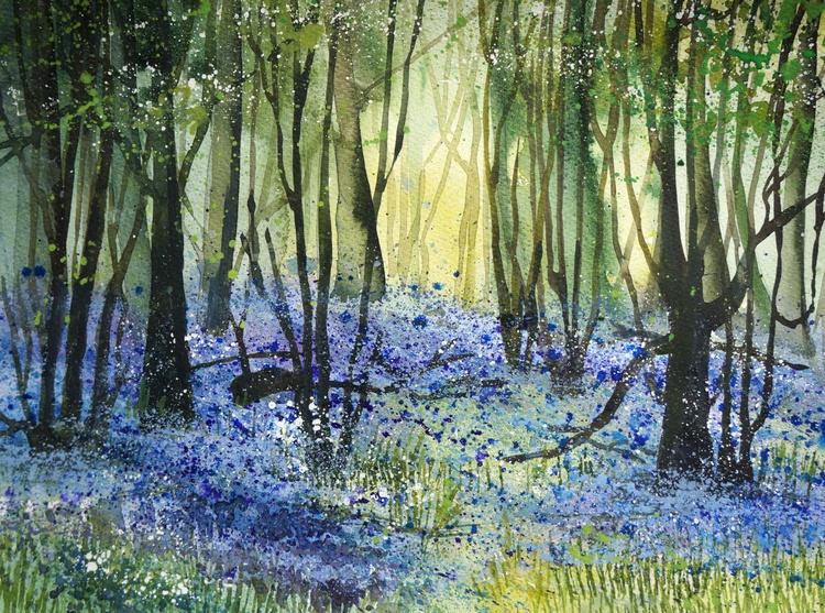 Bluebells in Hertfordshire - Image 0