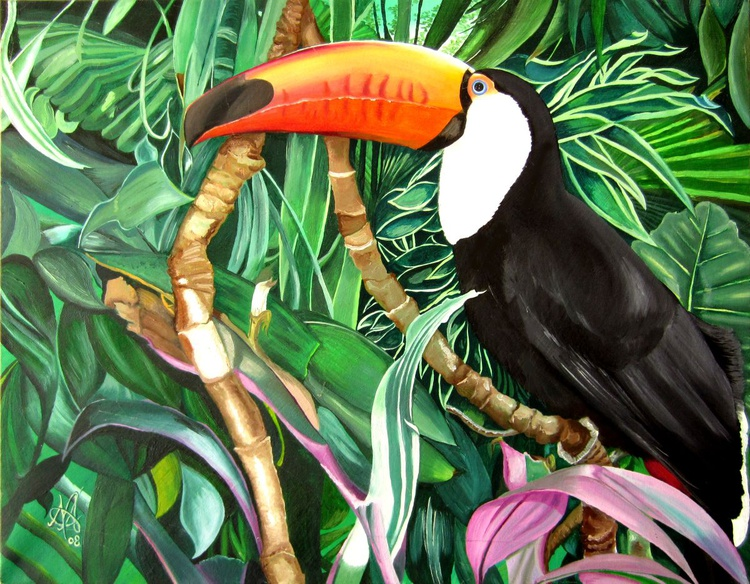 The Toucan - Image 0