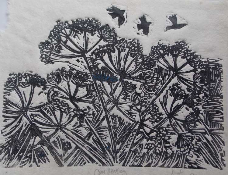 Cow Parsley and Crows - Image 0