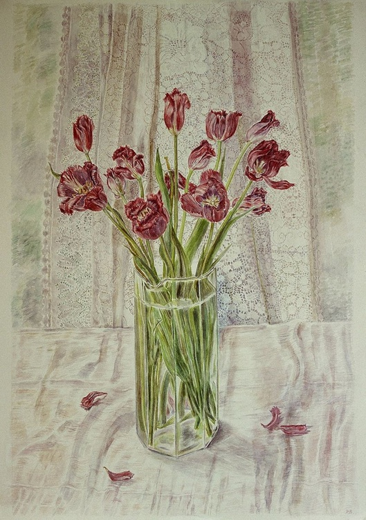 Glass of Tulips with Lace curtain - Image 0