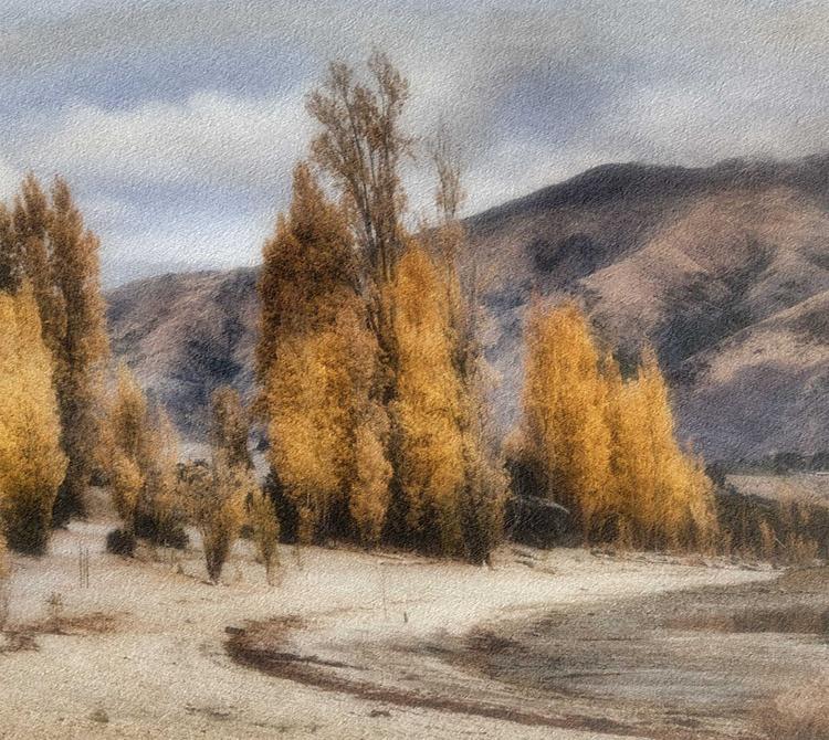 Popplars, Lake Wanaka, New Zealand - Image 0
