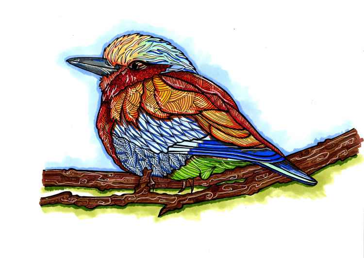 Colourful Bird -
