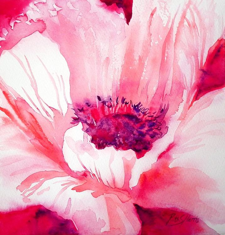 Square Pink Poppy - Image 0