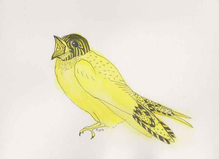 Yellow Soprano Swallow