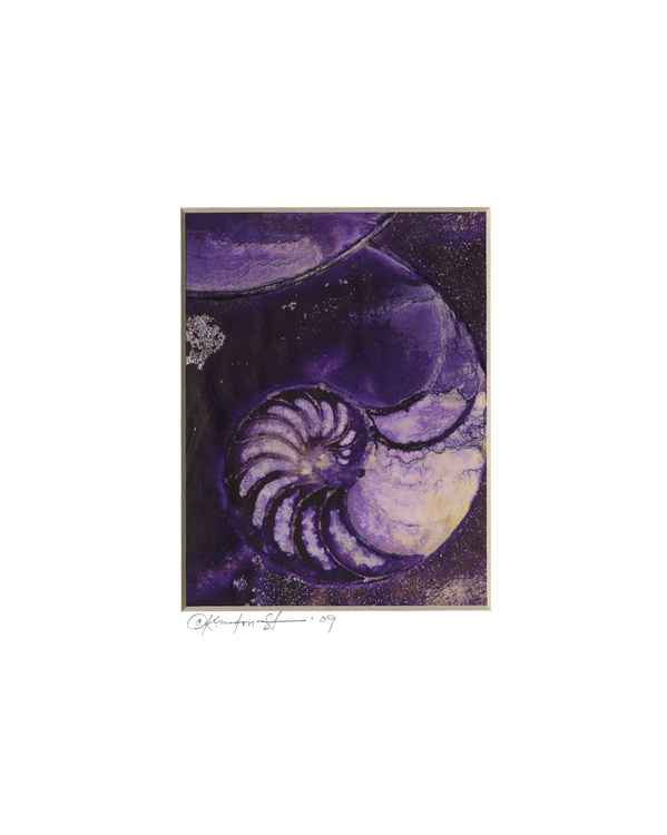 Sea Shell Watercolor Painting, Ocean - Nautilus Shell No. 944 -