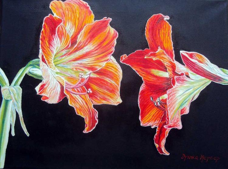 Amaryllis Original Oil Painting Red Flowers Realism Floral Art - Image 0
