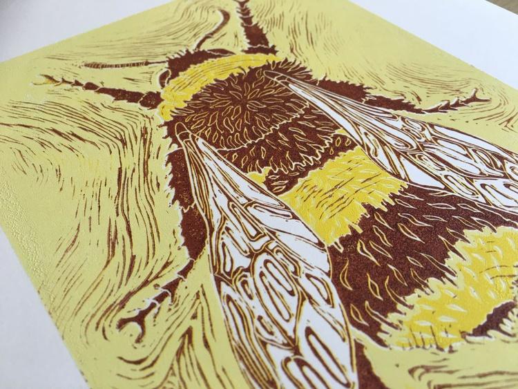 Bombus muscorum - Moss carder Bumblebee - Image 0