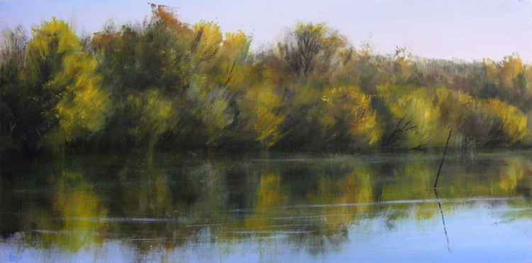 Reflection in the river -