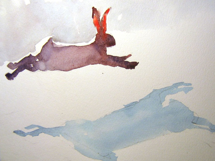 Run, run,rabbit.... - Image 0