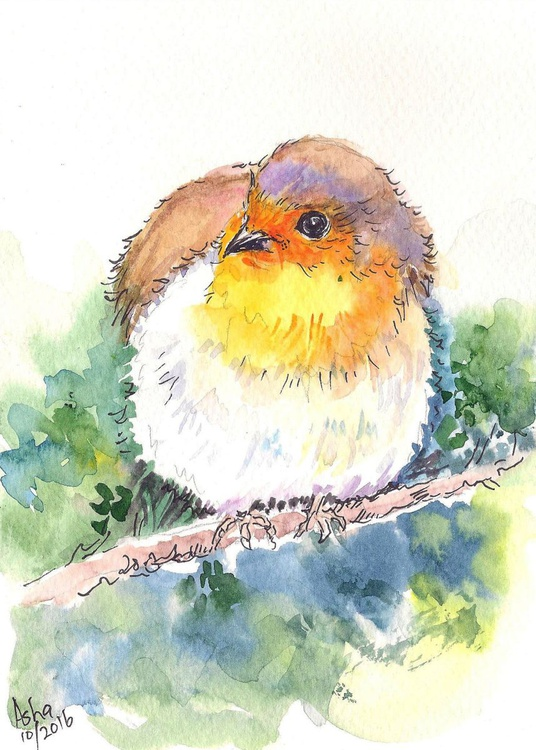 """Robin Perched on a branch  5""""x 7"""" - Image 0"""