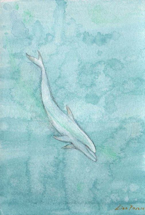 Diving White Dolphin II original watercolour painting - Image 0