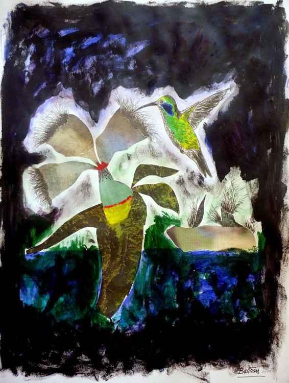 Le colibri -