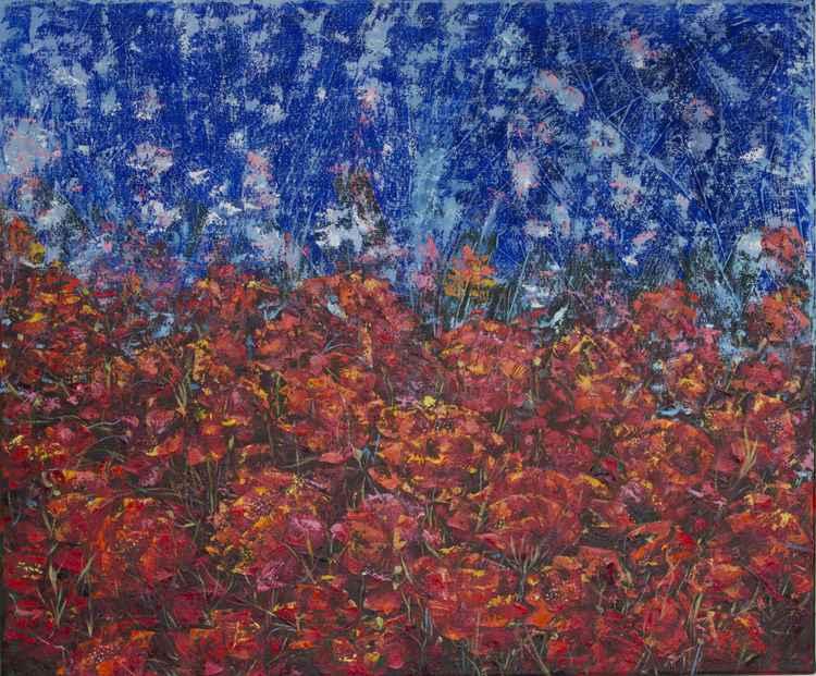 Night Poppies -