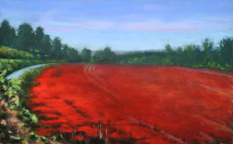 SEA OF POPPIES -