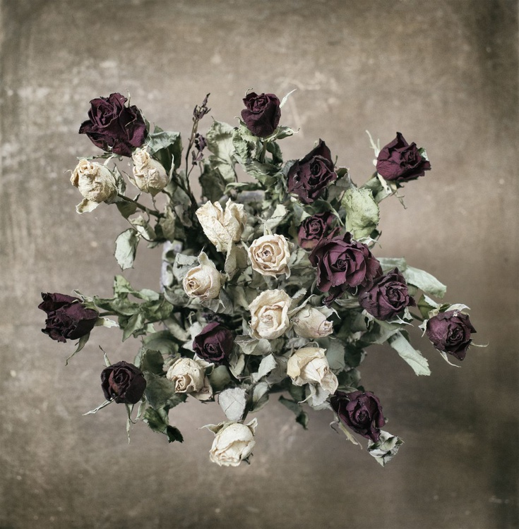 Bouquet of Roses (edition of 30) - Image 0