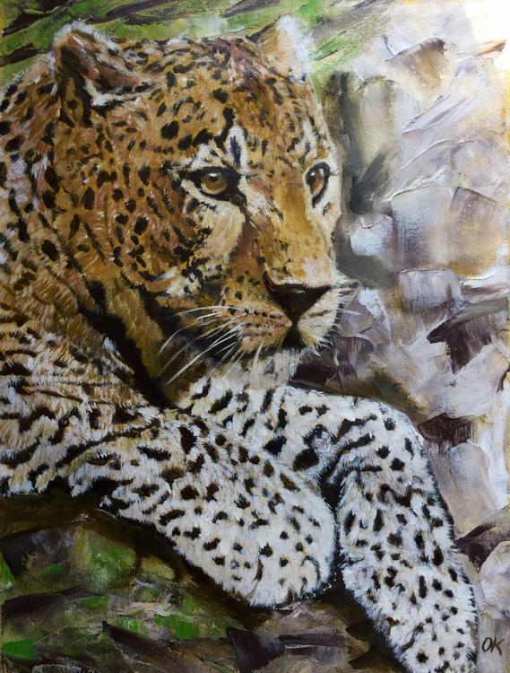 leopard in rocks 2 - Image 0