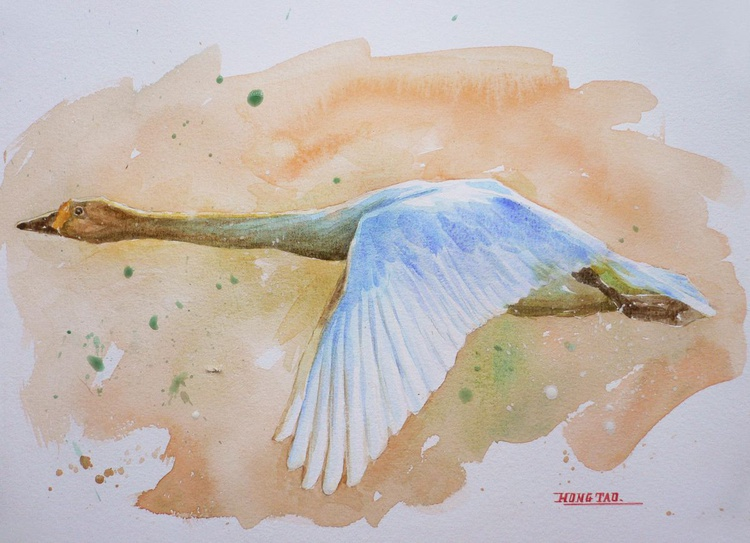 ORIGINAL WATERCOLOUR PAINTING  ANUMAL ARTWORK  WILD GOOSE ON  PAPER#16-6-10 - Image 0