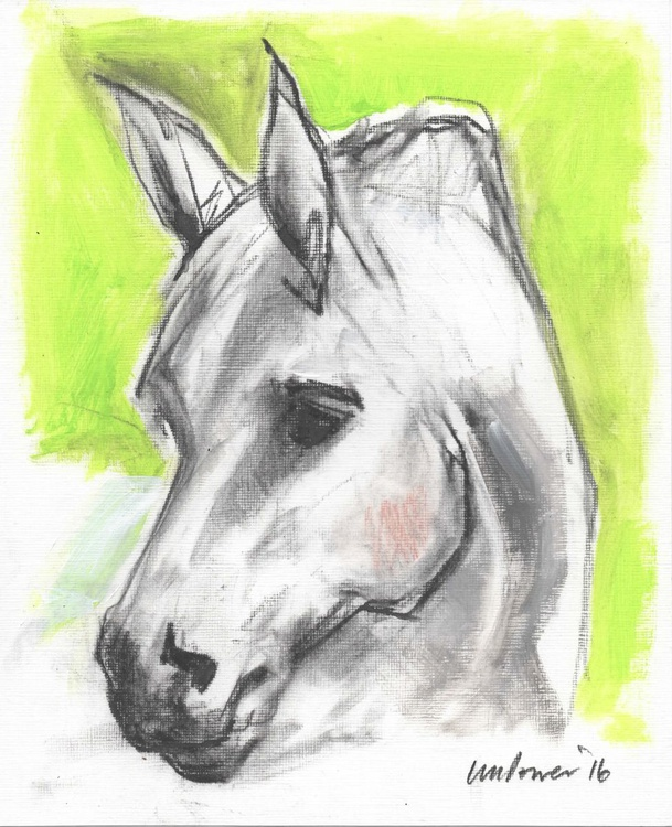 White Horse and Green - Image 0