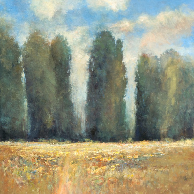 Afternoon Trees 24x24 inches - Image 0