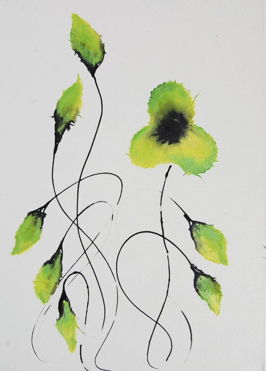 Oriental Poppies 3 - Image 0