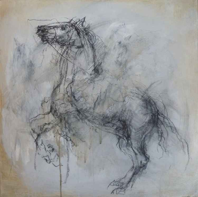 Horse charcoal sketch on canvas -