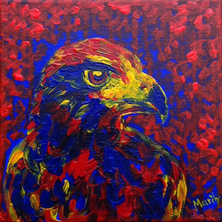 """Hawk"" - Image 0"