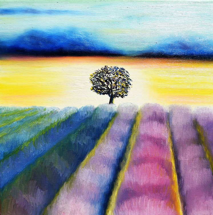 Sunrise Fields - Image 0