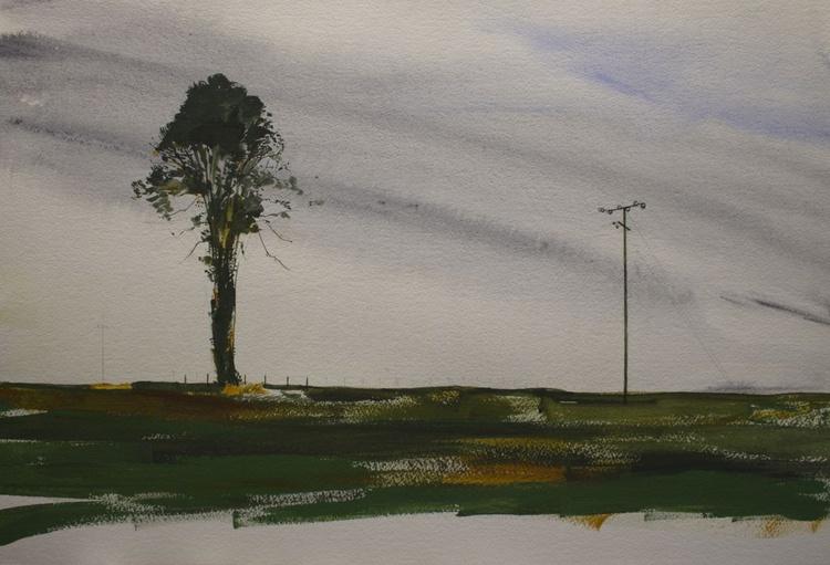 Tree and Telegraph Pole - Image 0