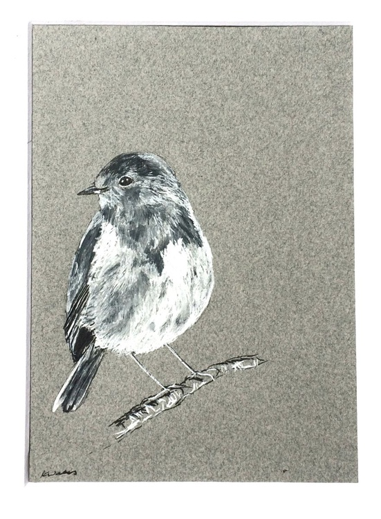 Robin, Grey, Pen and Ink - Image 0