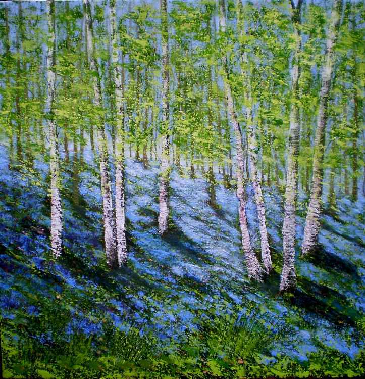 Bluebell wood -