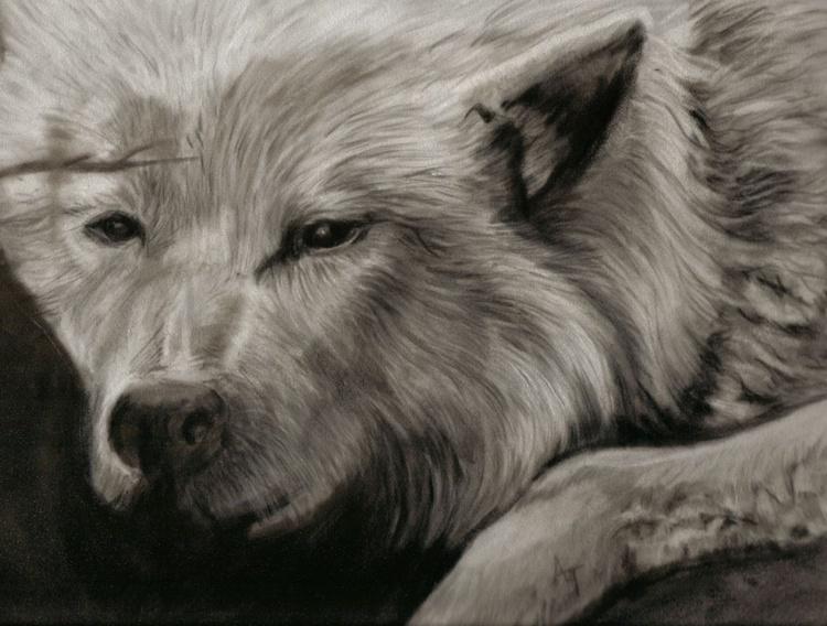 Wolf - Image 0