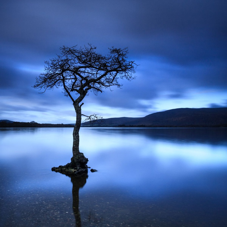 Day is Blue - Image 0
