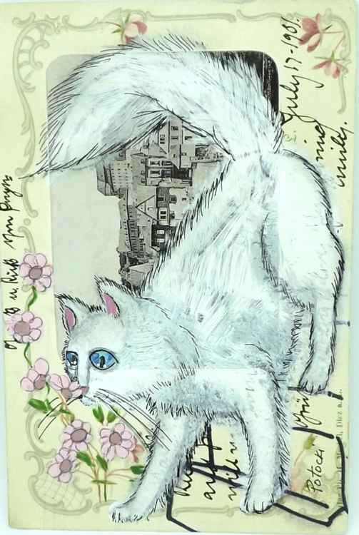 White Cat Sniffing Flowers- Cats of May Series