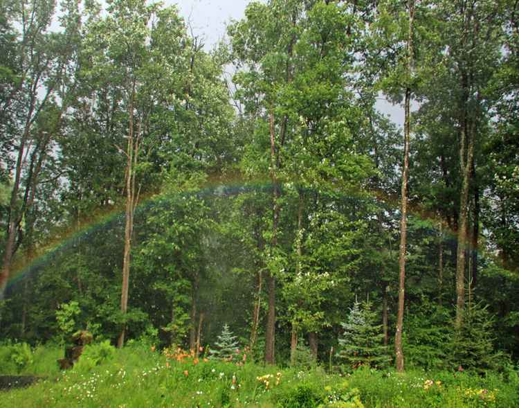 Front yard Rainbow