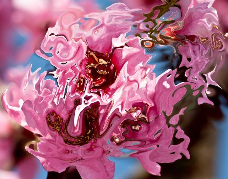 pink shape and shades - Image 0