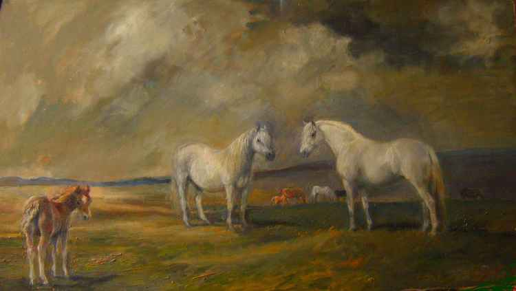Welsh Ponies in a Landscape horses -