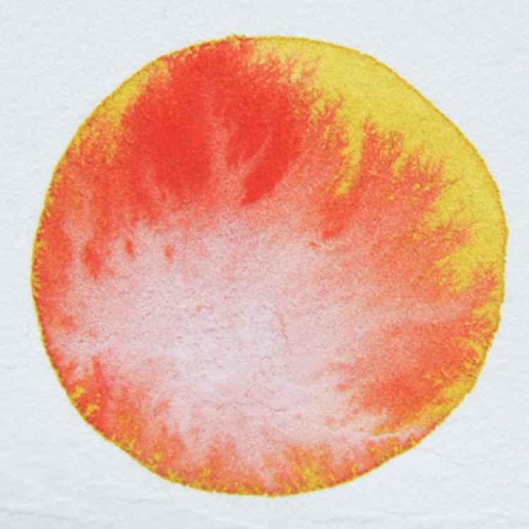 Healing Circle 12 -