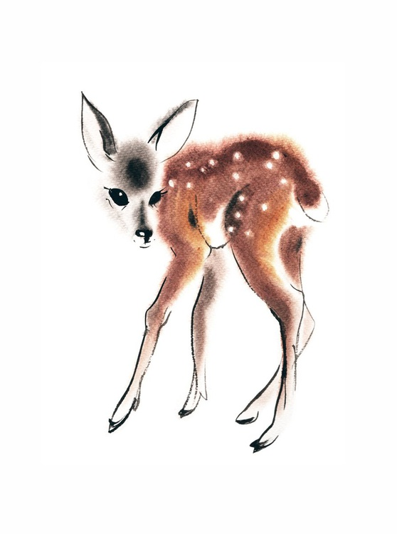 First Wobbly Steps - Fawn Baby Deer - Image 0
