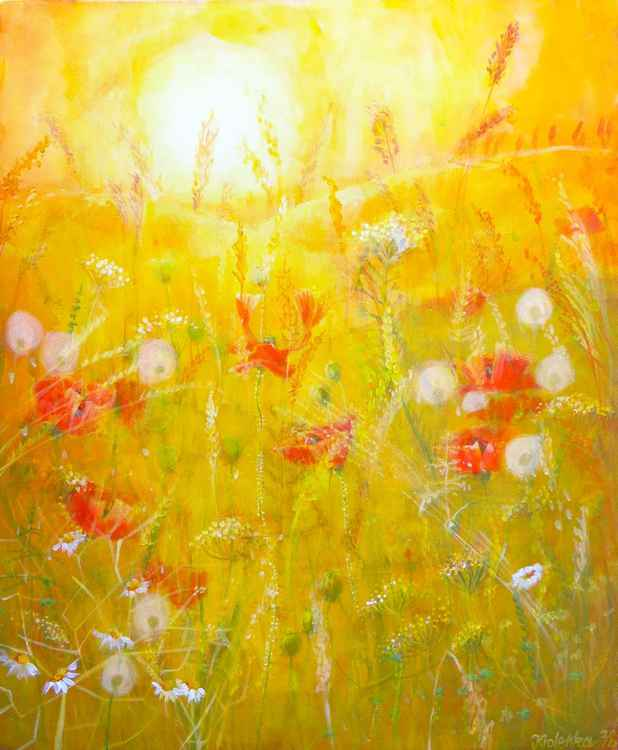 Poppies and dandelions in the Rye -