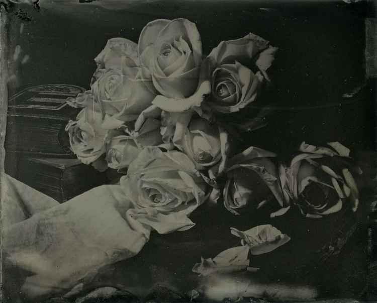 Prose - the Rose Garden of Secrets