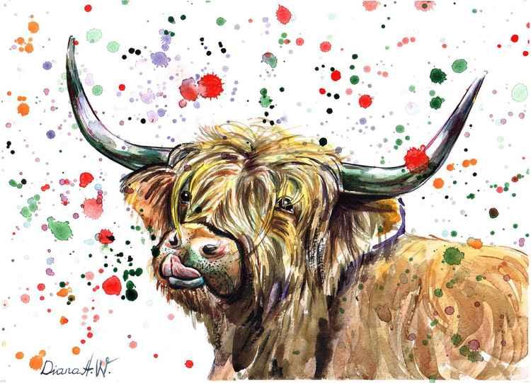 Highland Moo Cow -