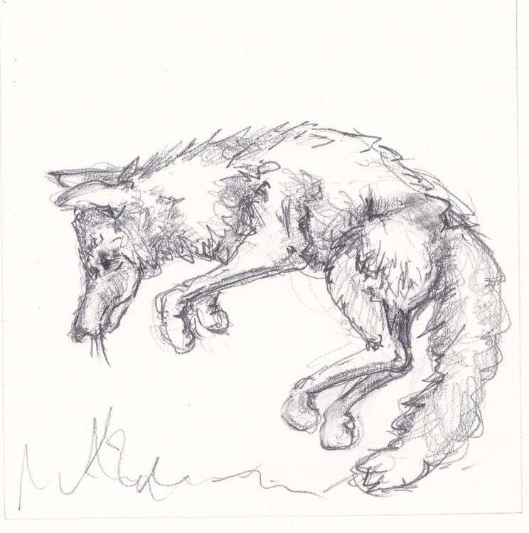 Pouncing Fox - Image 0